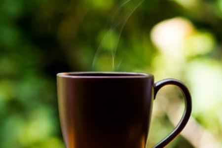 信阳红茶叶价格表 - 信阳红茶的特点