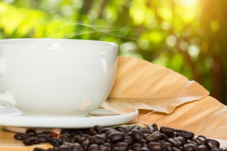 东和茶叶 - 找找茶大益行情