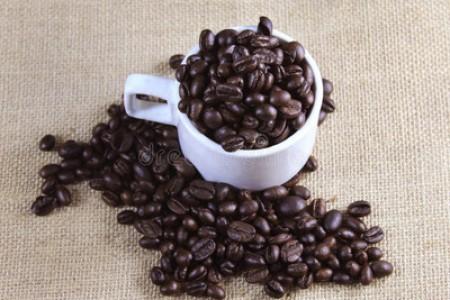 安徽特产茶叶 - 安徽十大名茶