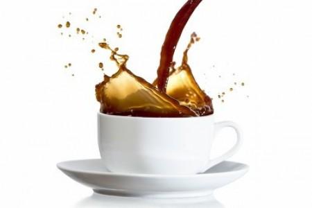 单枞茶叶 - 单丛茶是什么味道