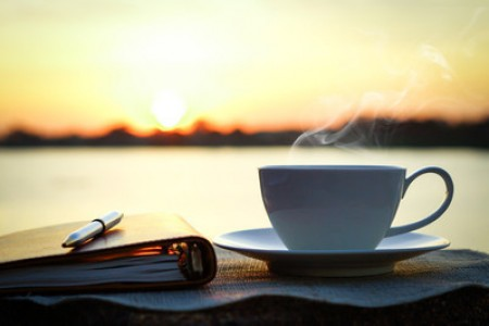 贡眉茶叶 - 2017贡眉白茶的价格是多少